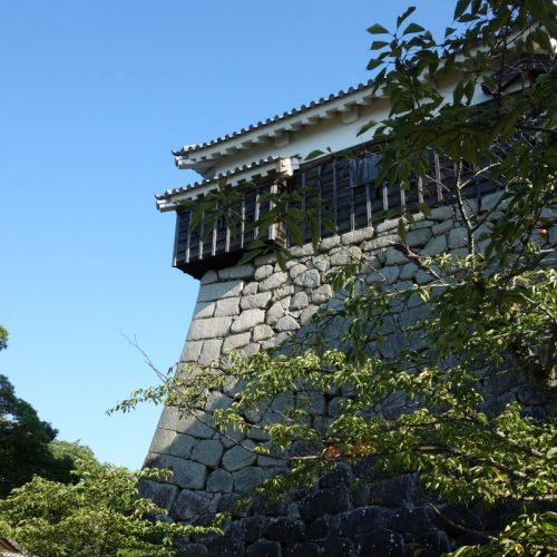 Matsuyama Castle #1