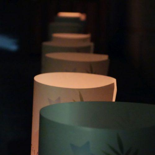 Bambus-Papier Laternen #2