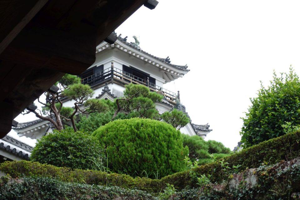 Burg Kōchi #3