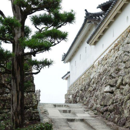 Burg Kōchi #5