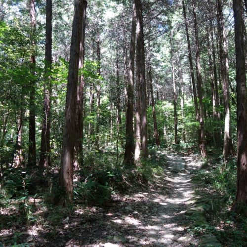 Wanderung zur Spitze des Yashima #1