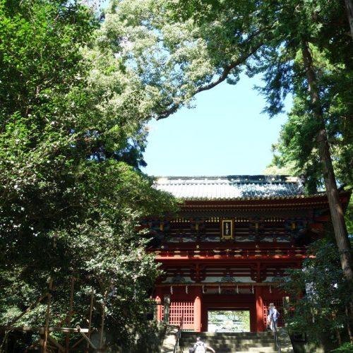 Kunozan Toshogu Schrein #1