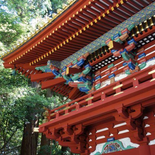 Kunozan Toshogu Schrein #3