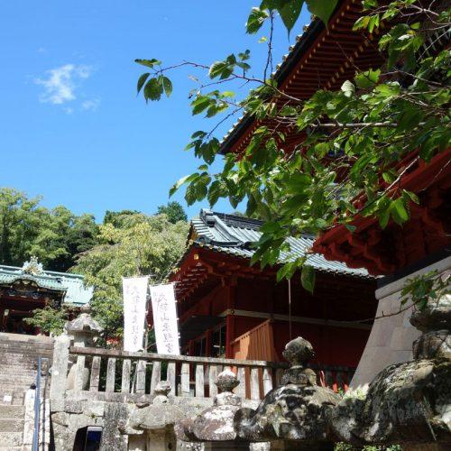 Kunozan Toshogu Schrein #7