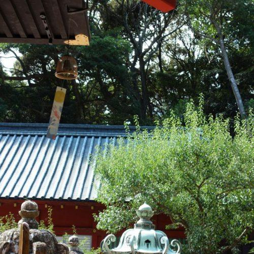 Kunozan Toshogu Schrein #12