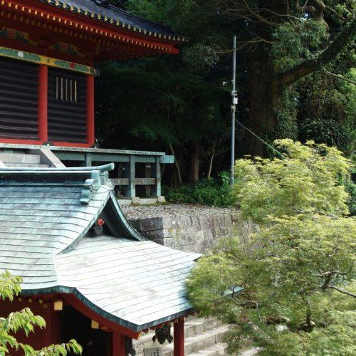 Kunozan Toshogu Schrein #14