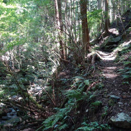 Sokusawa Trail #1