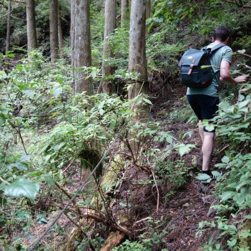 Sokusawa Trail #3