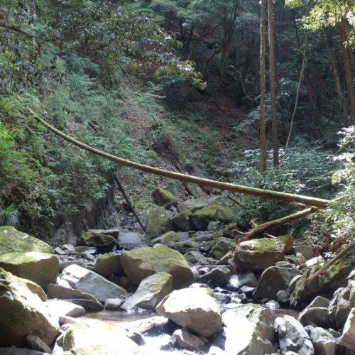 Old Hirayama Trail #5