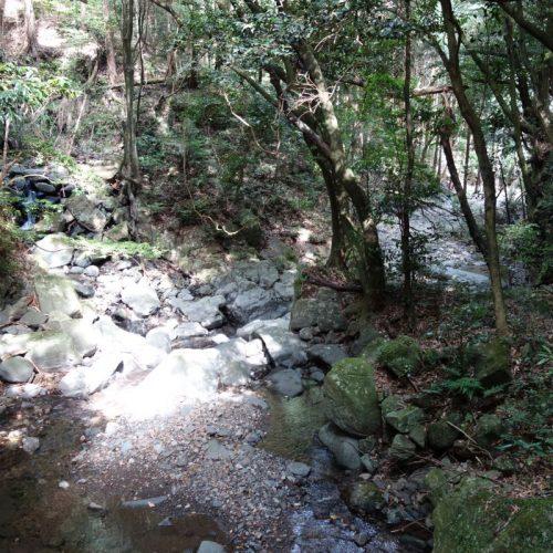 Old Hirayama Trail #4