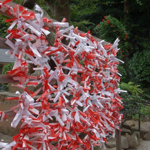 Enoshima Sightseeing #4