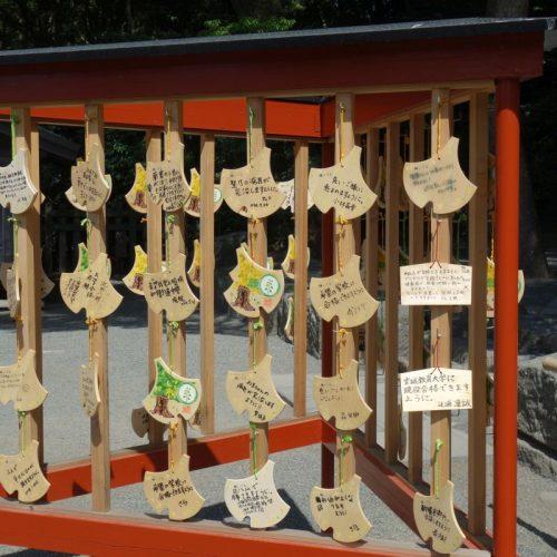 Kamakura Sightseeing #7