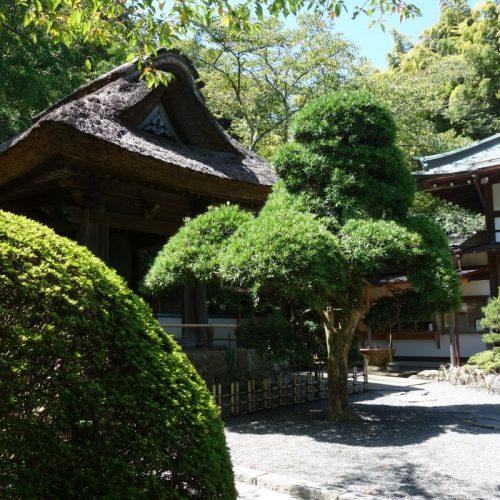 Kamakura Sightseeing #19