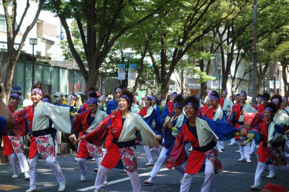 Super Yosakoi Parade #24