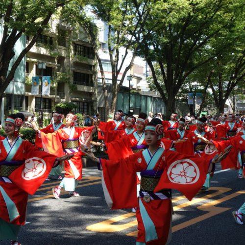 Super Yosakoi Parade #28
