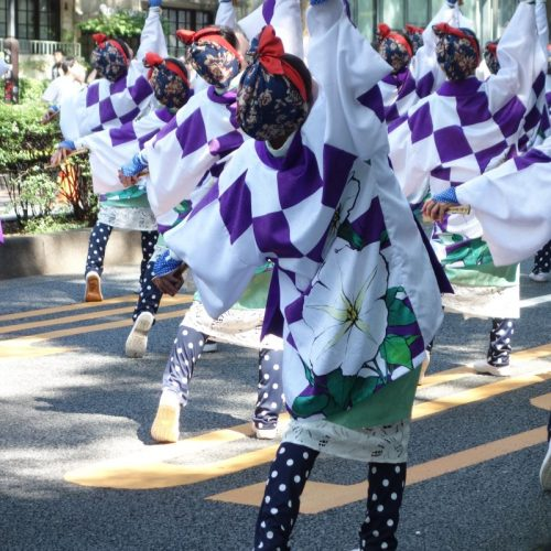 Super Yosakoi Parade #31