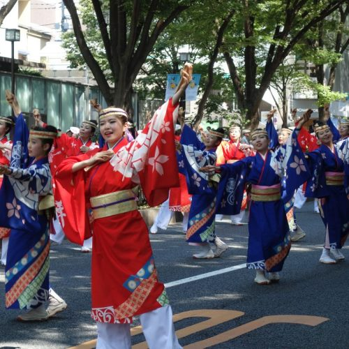 Super Yosakoi Parade #33