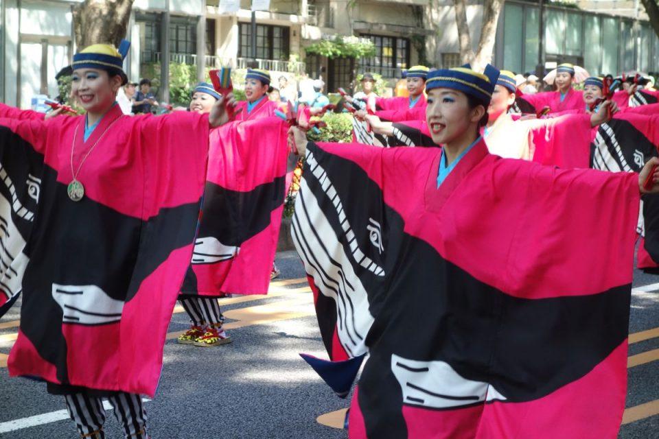 Super Yosakoi Parade #34