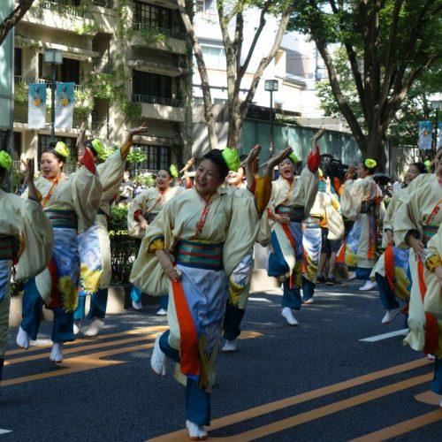 Super Yosakoi Parade #41
