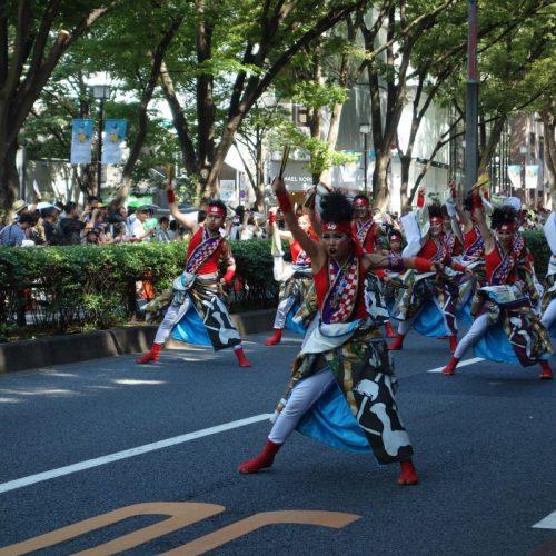 Super Yosakoi Parade #44
