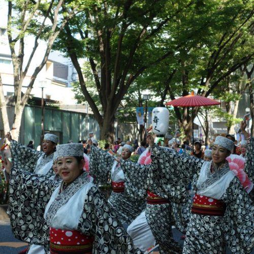 Super Yosakoi Parade #48
