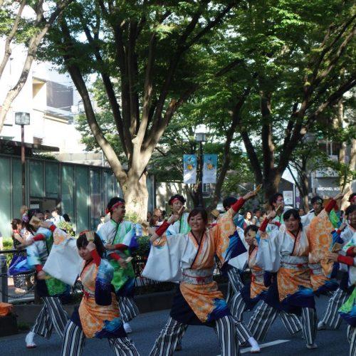 Super Yosakoi Parade #69