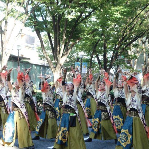 Super Yosakoi Parade #70