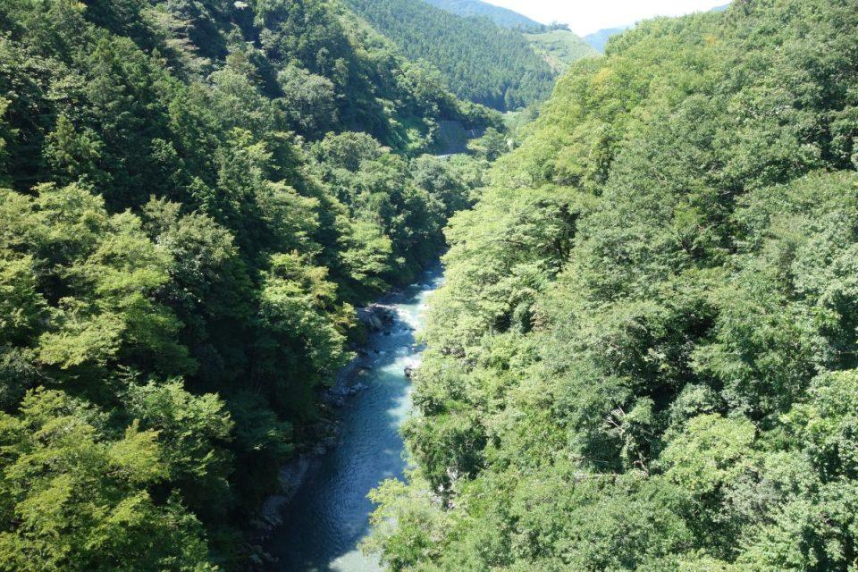 Ausblick auf den Fluss Tama