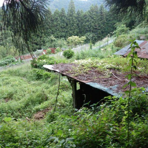 Ein Garten inmitten der Berge