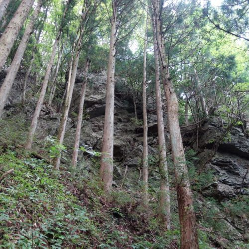 Felswände direkt am Wanderweg