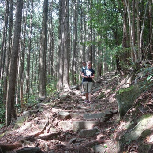 Old Hirayama Trail #3