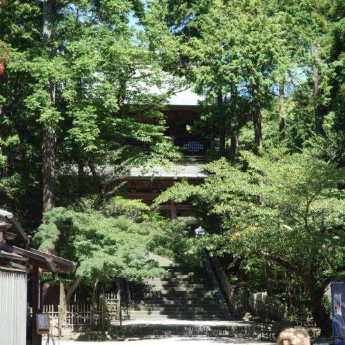 Kamakura Sightseeing #29