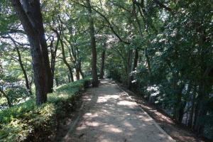 Allee im Stadtpark Matsuyama